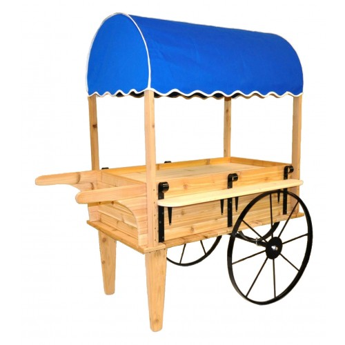 Wooden Flower Cart With Canopy 2